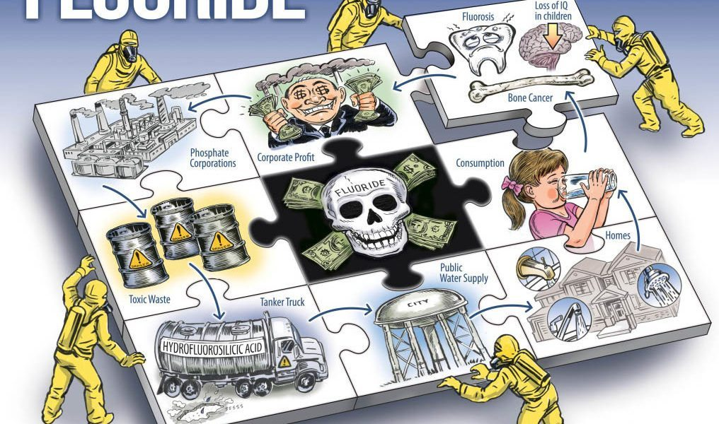 Ben Garrison wins First Place in FAN Poster Competition