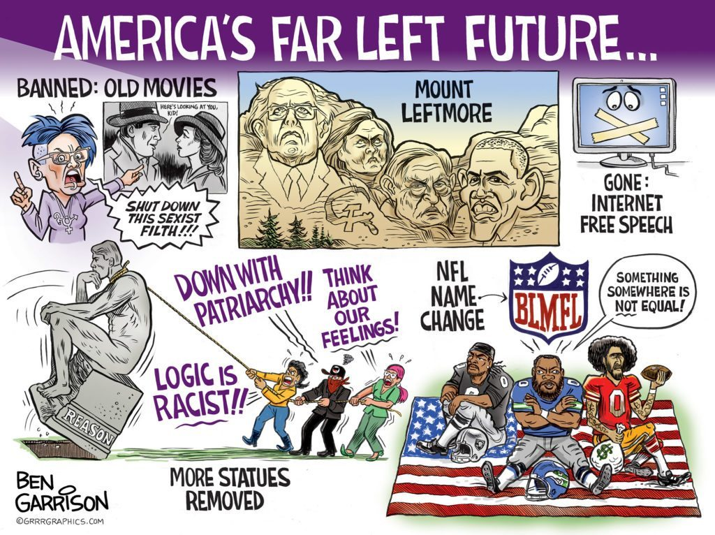 Image result for leftist logic cartoon