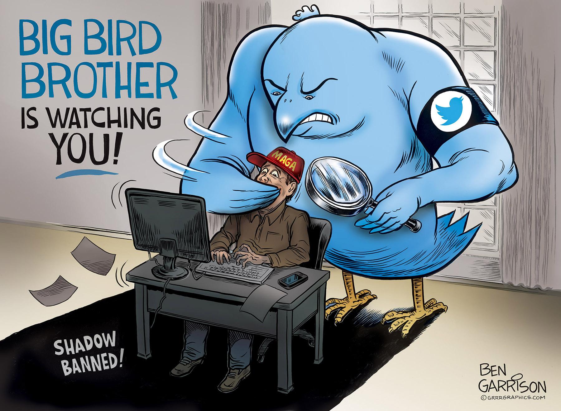 Twitter is Big Bird Brother