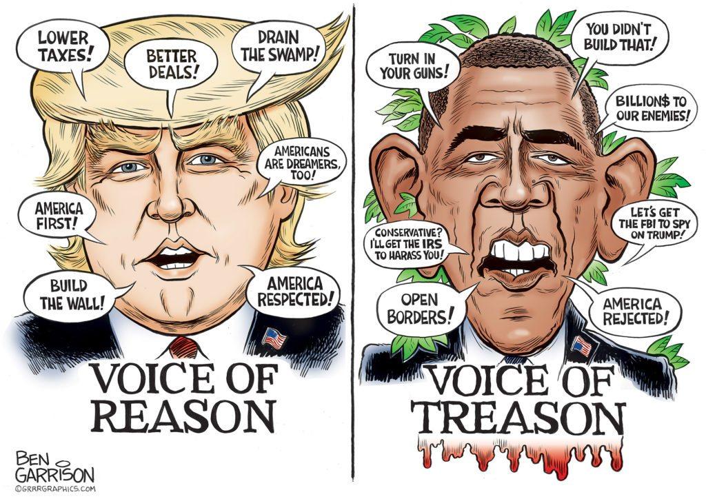Reason vs. Treason cartoon by Ben Garrison