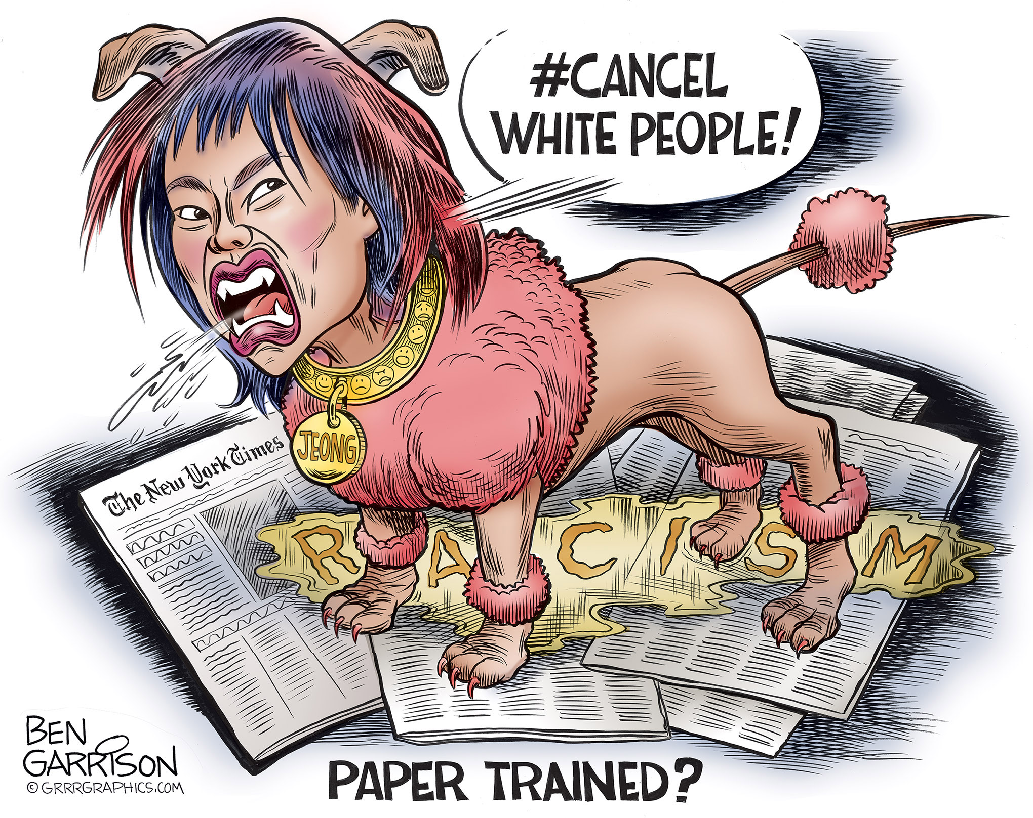 sarah_jeong_cartoon.jpg